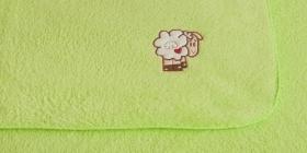 Dino - dvou-vrstvá deka