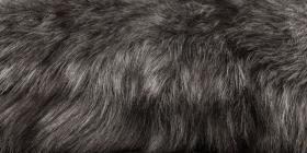Kožešina CX-šedá